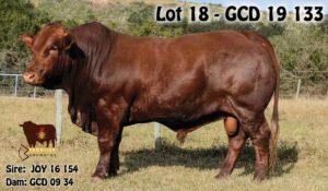 Lot 18 - GCD 19 133