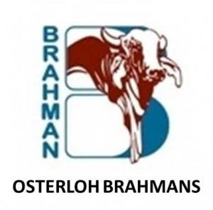 Osterloh Brahman Logo
