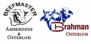 Osterloh & Amberdene Logo