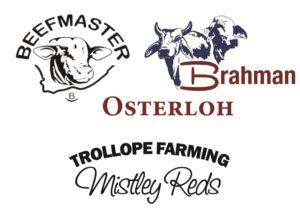 Osterloh & Les Trollope