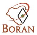 Boran Logo