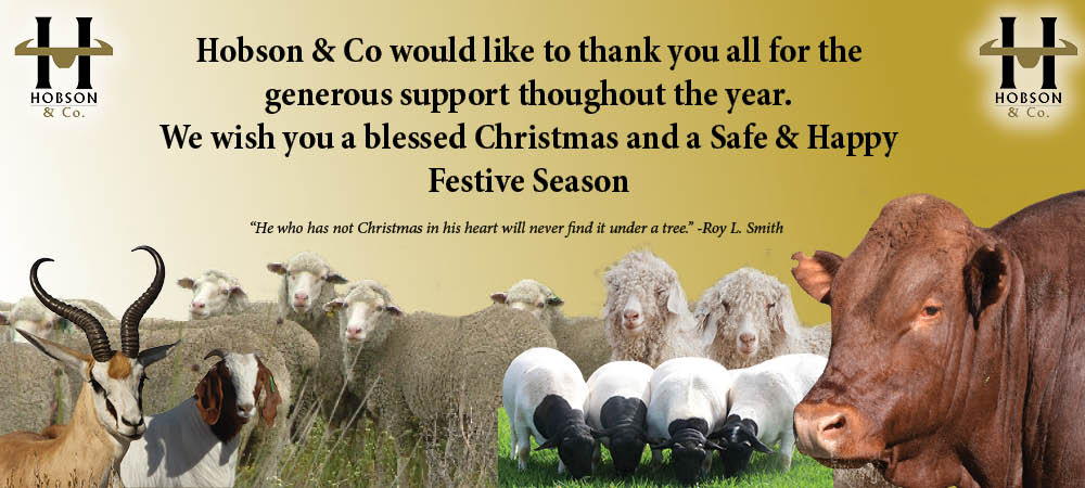 Hobson & Co December Thank you