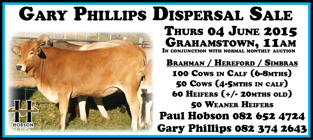 Gary Phillips Dispersal Sale