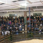 The Frontier sale was well attended with 108 Buyers registering