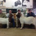 (From L-R): Francois Laing bought the Top Priced Ewe for R10500, Anton Scheffer (Seller), Kobus Lotter (Seller) & Chippie Poultney bought the Top Priced Ram for R14000