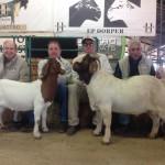(From L-R): Francois Laing, Anton Scheffer, Kobus Lotter & Paul Mills