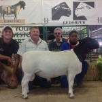 Top Priced Dorper Ram sold for R20000. (From L-R) Ash Phillips, Tiboy Deyzel, and Ernie, and Johnson (Handler)