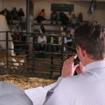 Auctioneer Brandon Leer officiating the sale