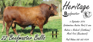 The Heritage Beefmaster Sale
