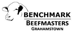 Benchmark Beefmaster Grahamstown LOGO