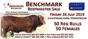 Benchmark- Justin Stretton
