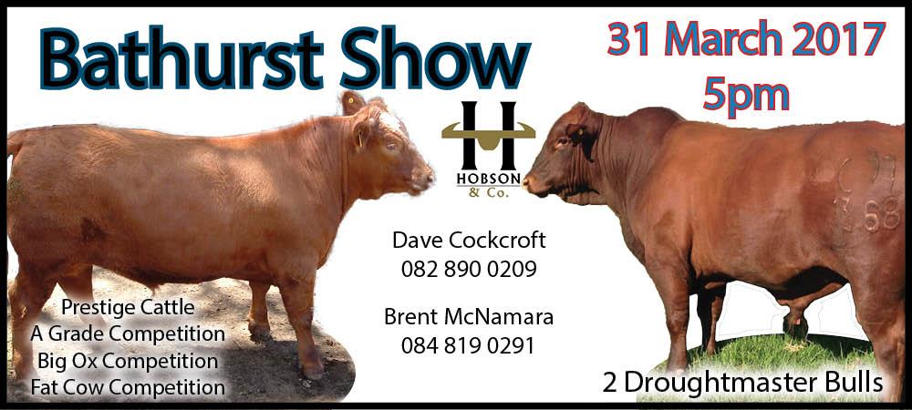 Bathurst Show Slider