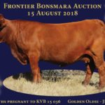 Lot 65 - Golden Oldie JRP 07 52