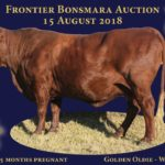 Lot 71 - Golden Oldie WCB 08 30