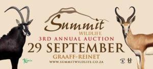 Summit Wildlife