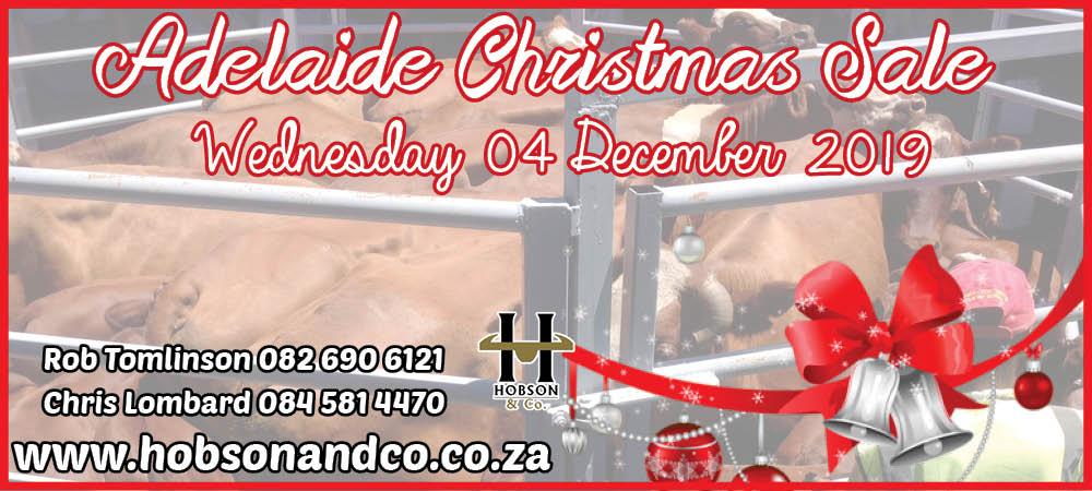 Adelaide Christmas Slider
