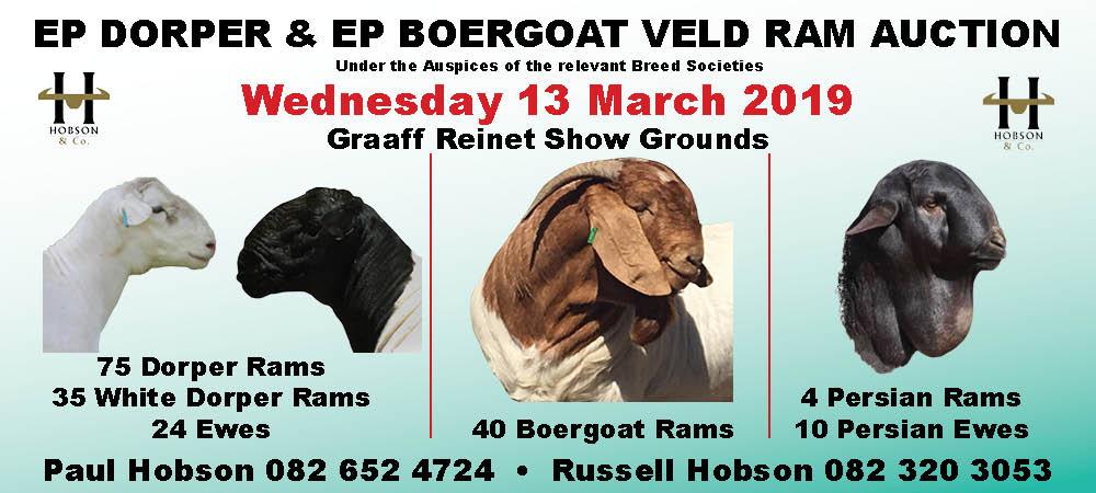 EP Dorper & EP Boergoat Slider - March
