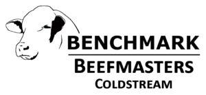 Benchmark Beefmaster Coldstream LOGO